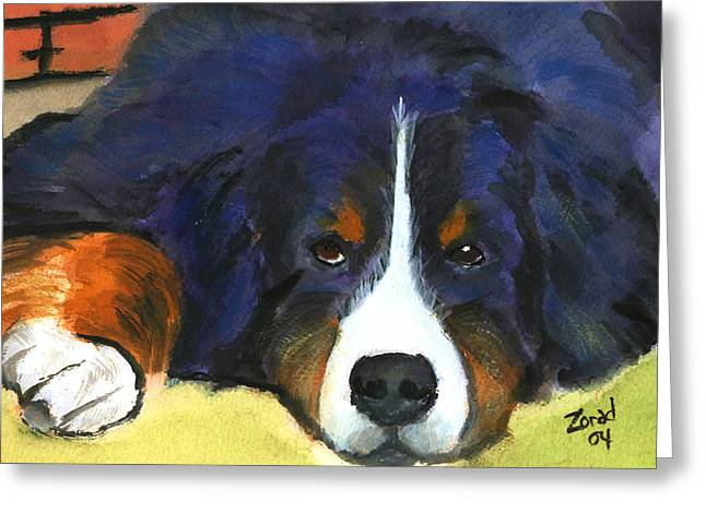 Bernes Mountain Dog Watercolor Dog Print Greeting Card by Mary Jo Zorad