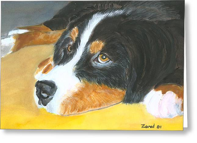 Bernese Mountain Dog Art Print Greeting Card by Mary Jo Zorad