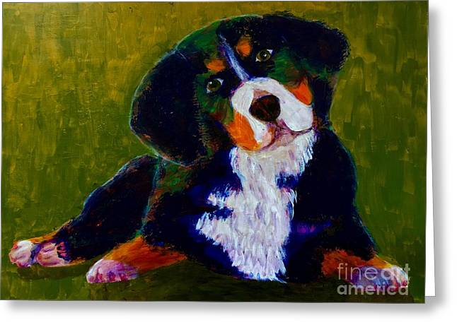 Greeting Card featuring the painting Bernese Mtn Dog Puppy by Donald J Ryker III