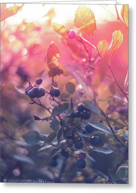 Berries In The Sun Greeting Card