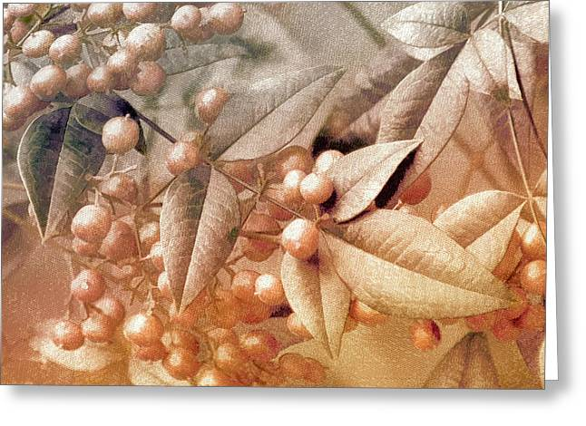 Berry And Leaf Brocade Greeting Card by Holly Kempe