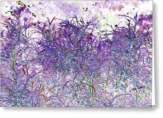 Greeting Card featuring the photograph Berry Bush by Ellen O'Reilly