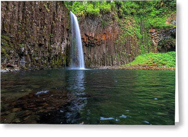 Beside Abiqua Falls In Summer Greeting Card by David Gn