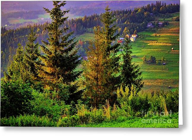 Greeting Card featuring the photograph Beskidy Mountains by Mariola Bitner
