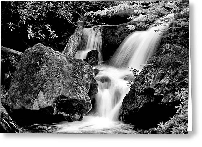 Best Of The Smokies Greeting Card by Paul W Faust -  Impressions of Light