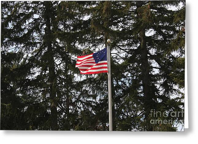 Betsy Ross Style American Flag Greeting Card by William Rogers