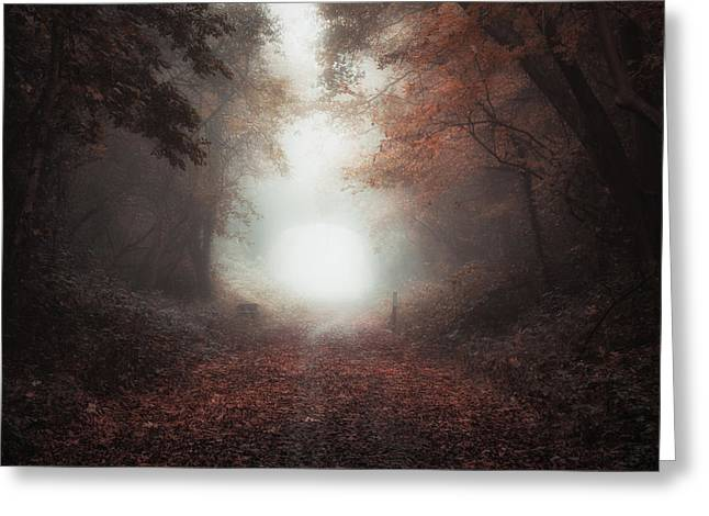 Between Autumn And Winter Greeting Card by Chris Fletcher