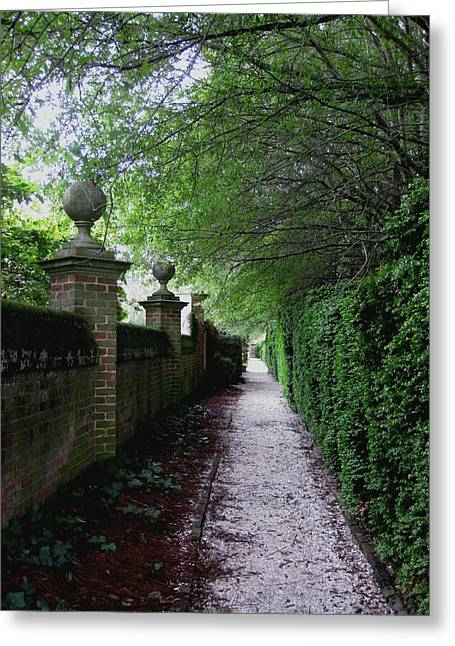 Between The Walls Greeting Card by Kathy Long