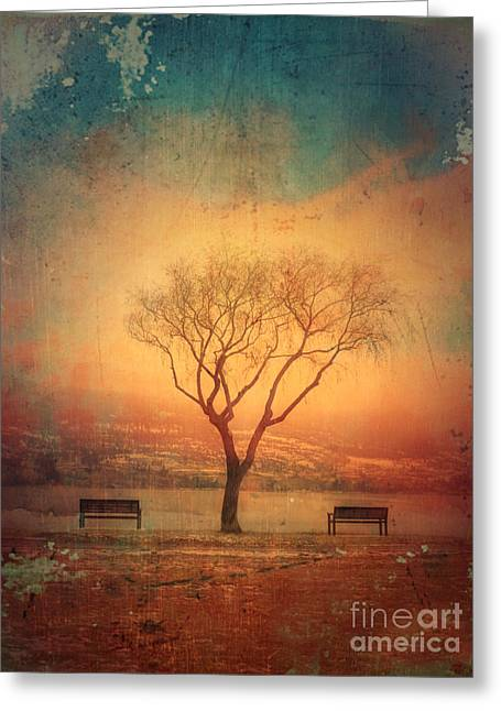 Between Two Benches Greeting Card
