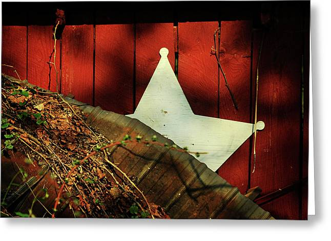 Metal Roof Greeting Cards - Between Two Worlds Greeting Card by Rebecca Sherman