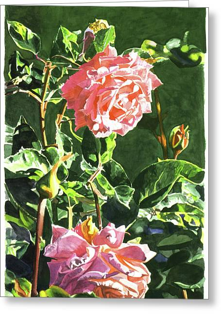 Roses Greeting Cards - Beverly Hills Rose Greeting Card by David Lloyd Glover