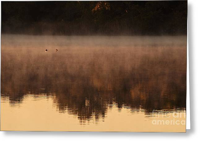 Greeting Card featuring the photograph Bev's Retreat by Tamyra Ayles