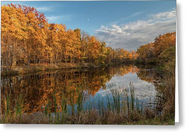 Beyer's Pond In Autumn Greeting Card