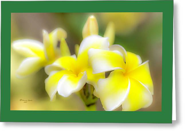 Beyond Beautiful Greeting Card by Marvin Spates
