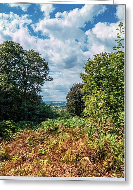 Beyond The Forest Greeting Card