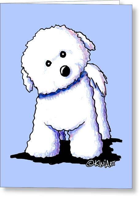Bichon Boy Greeting Card