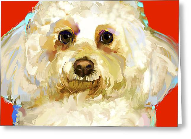 Bichon Frise 1 Greeting Card by Jackie Jacobson