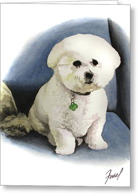 Bichon Sonny Greeting Card