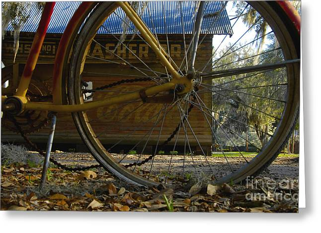 Bicycle At Micanopy Greeting Card by David Lee Thompson