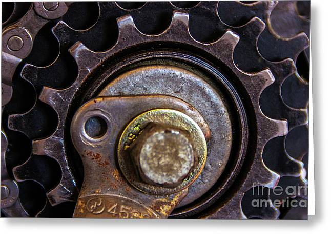 Bicycle Cog Chain Gear Greeting Card