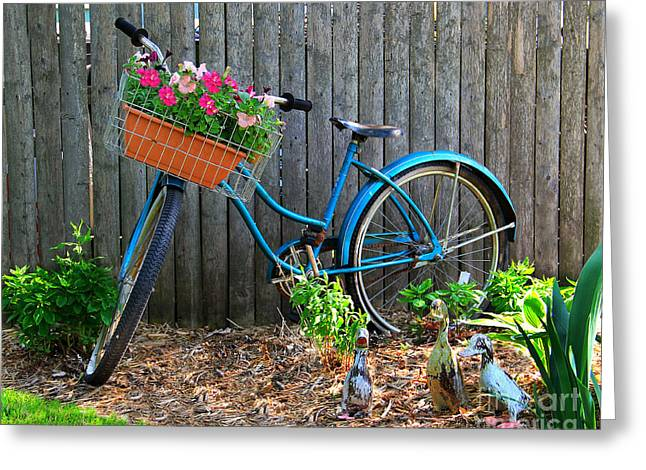 Bicycle Garden Greeting Card by Perry Webster