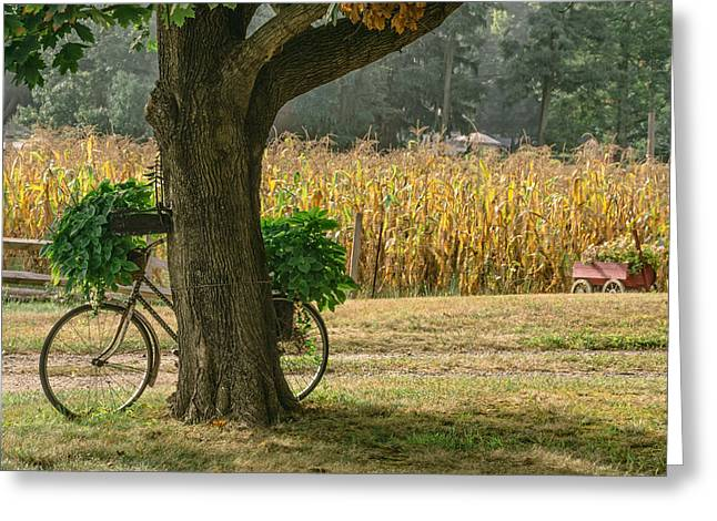 Bicycle Planter Greeting Card