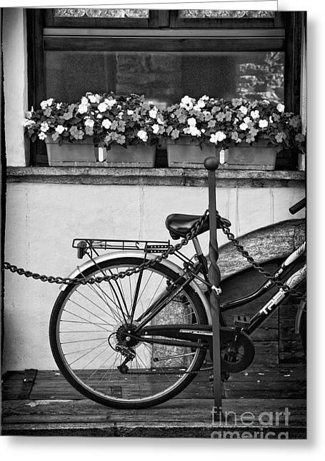 Silvia Ganora Greeting Cards - Bicycle with flowers Greeting Card by Silvia Ganora