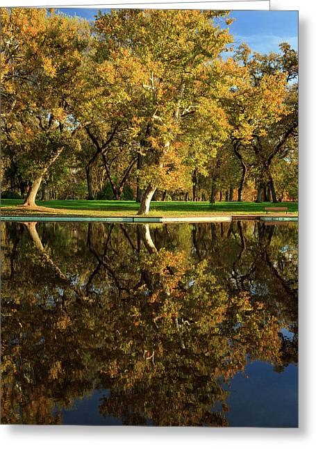 Bidwell Park Reflections Greeting Card