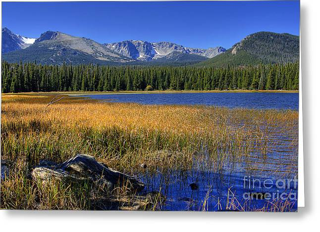 Bierstadt Lake Shoreline 2 Greeting Card