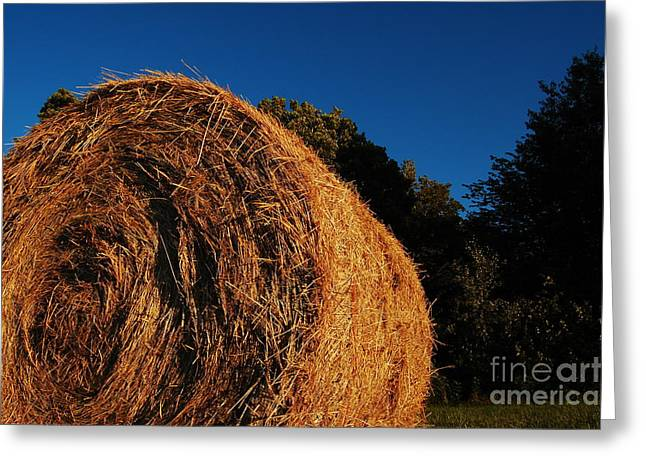 Big Bales Greeting Card by The Stone Age