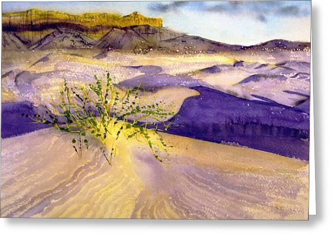 Big Bend Landscape II Greeting Card by Myrna Salaun