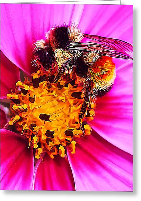 Big Bumble On Pink Greeting Card by ABeautifulSky Photography