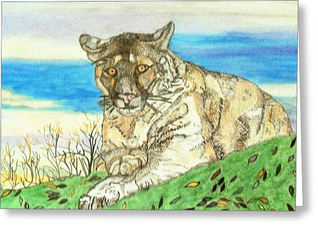 Big Cat Watching Out For Prey Greeting Card by Connie Valasco