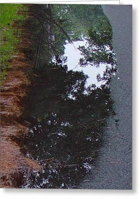Big Crow Puddle Greeting Card by Ron Sylvia