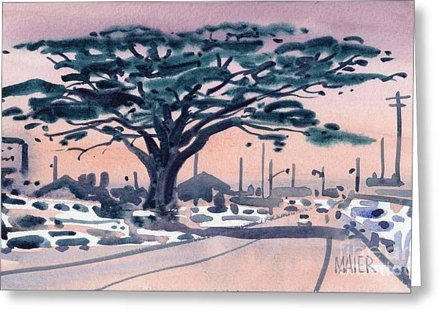 Big Cypress Half Moon Bay Greeting Card