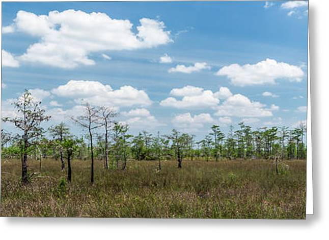Greeting Card featuring the photograph Big Cypress Marshes by Jon Glaser