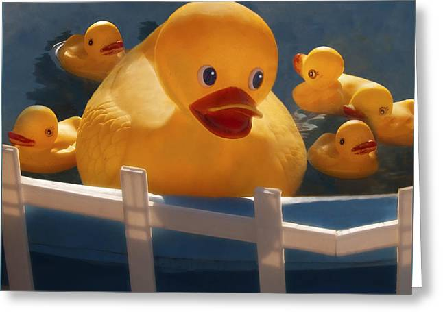 Big Ducky In A Little Pond Greeting Card by Mitch Spence