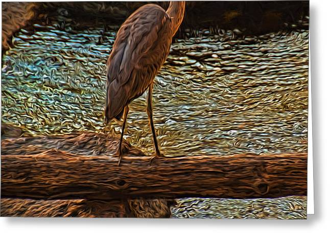 Big Falls Blue Heron Greeting Card by Trey Foerster
