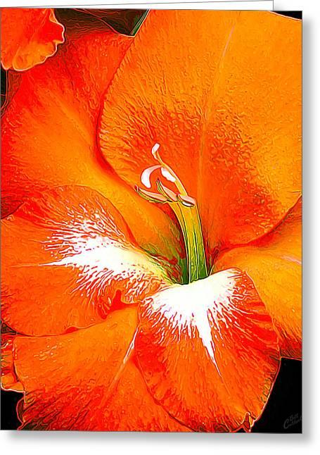 Big Glad In Bright Orange Greeting Card