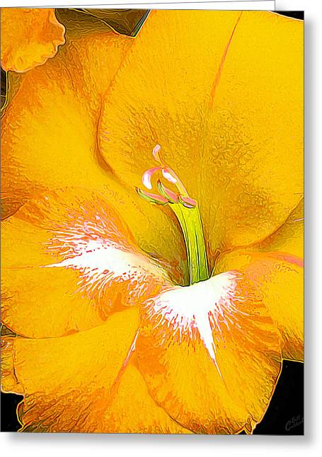 Big Glad In Yellow Greeting Card by ABeautifulSky Photography