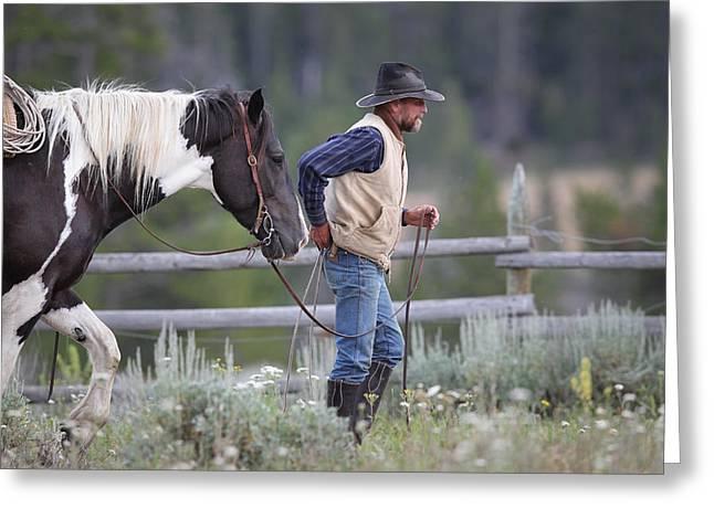 Big Horn Cowboy Greeting Card