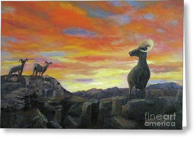 Big Horn Sheep At Sunset Greeting Card