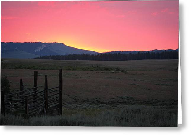 Big Horn Sunrise Greeting Card