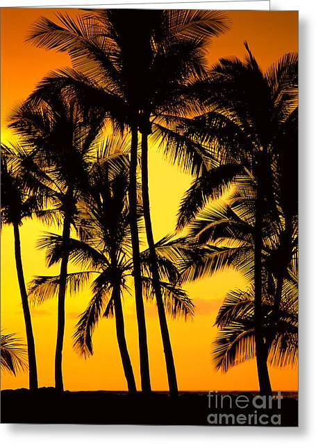Big Island, View Greeting Card by Greg Vaughn - Printscapes
