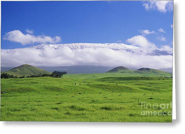 Big Island, Waimea Greeting Card by Peter French - Printscapes