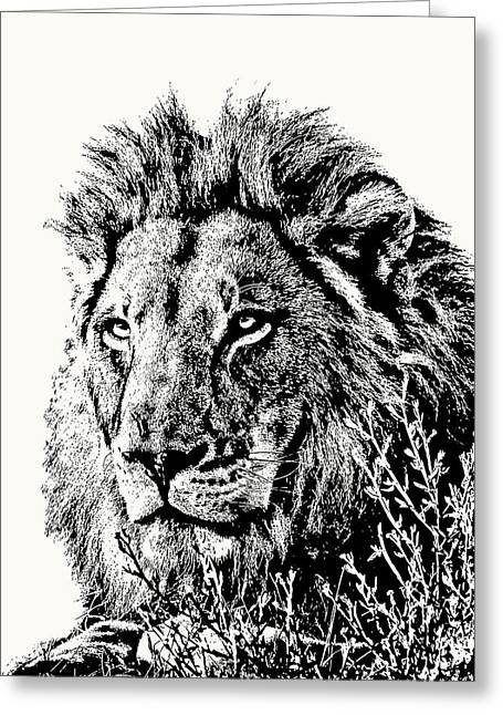 Big Male Lion Portrait Greeting Card