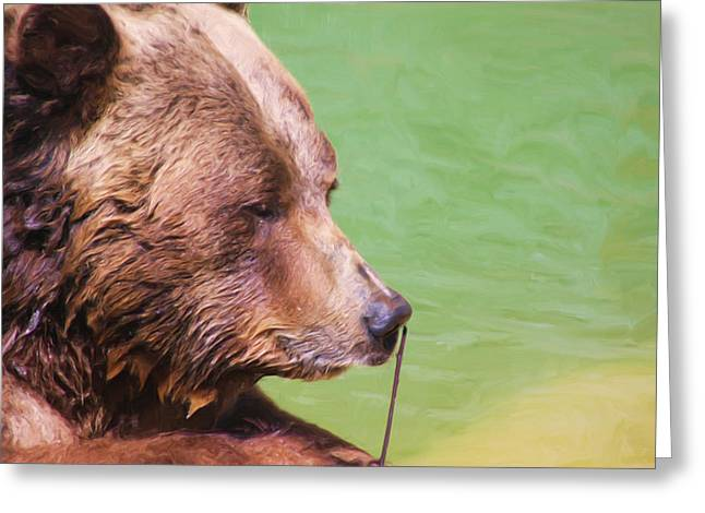 Big Old Bear With A Tiny Stick Greeting Card by Karol Livote