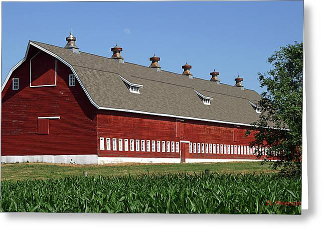 Big Red Barn In Spring Greeting Card