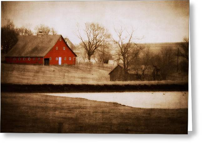 Big Red Greeting Card by Julie Hamilton