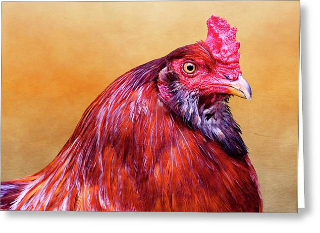 Big Red Rooster Greeting Card by Carol Leigh